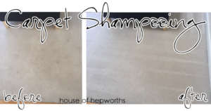 When you can't replace carpet, at least shampoo it