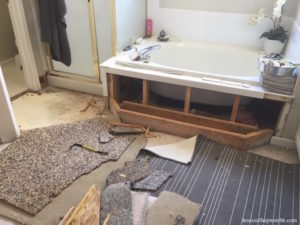 An unexpected Master Bathroom renovation, phase 1