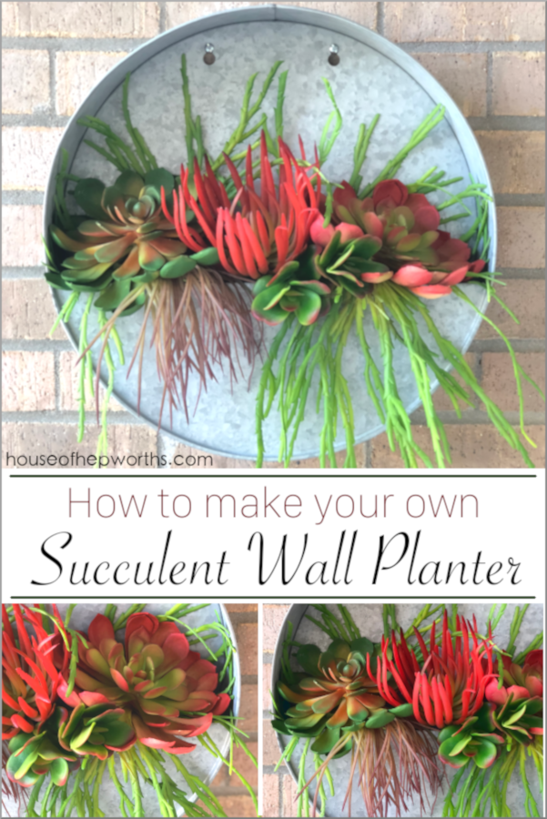 Make Your Own Succulent Hanging Wall Planter House Of